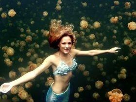 周游世界的美人鱼