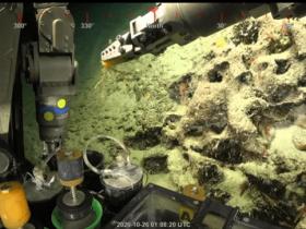 澳大利亚发现一座500米高的珊瑚礁