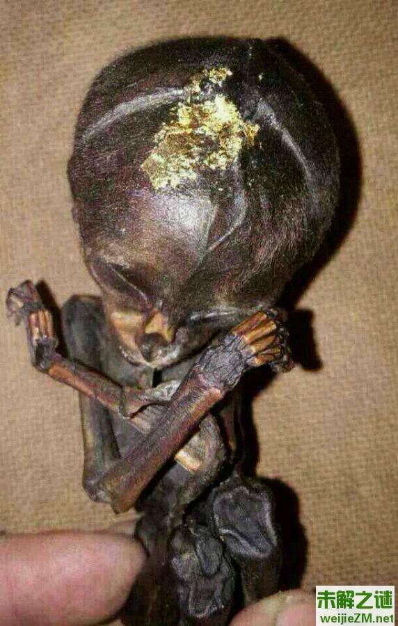 诡异的泰国蛊术,附各种盅术图片以及作用和用法。