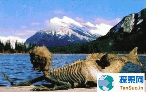 1980年南海渔民捕捉到人鱼事件