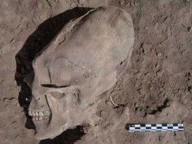 """墨西哥千年墓葬出土后惊现""""异形头骨"""""""