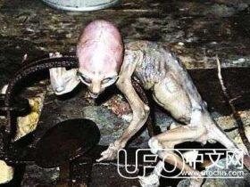 1983年7月俄罗斯外星婴儿是真的吗?巴西发现外星弃婴