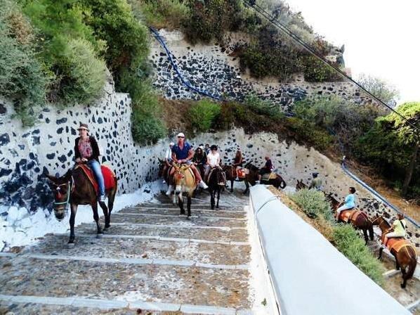希腊政府禁止胖游客去本国旅游